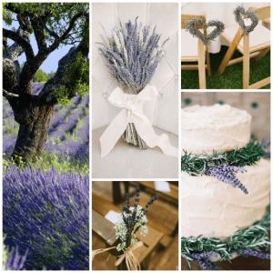 wedding-provence-lavender-5