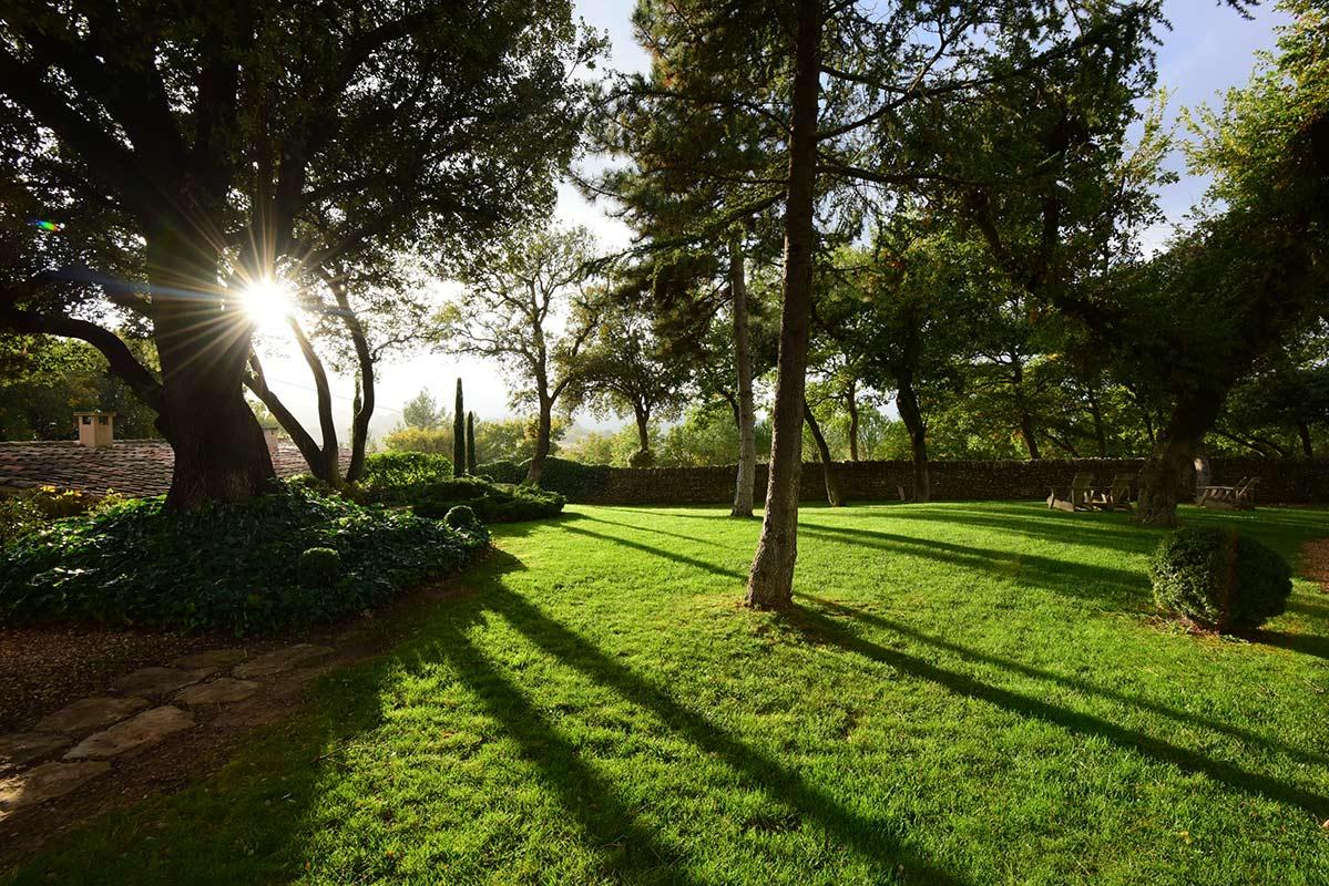 SE MARIER DANS UN DOMAINE VITICOLE - pelouse